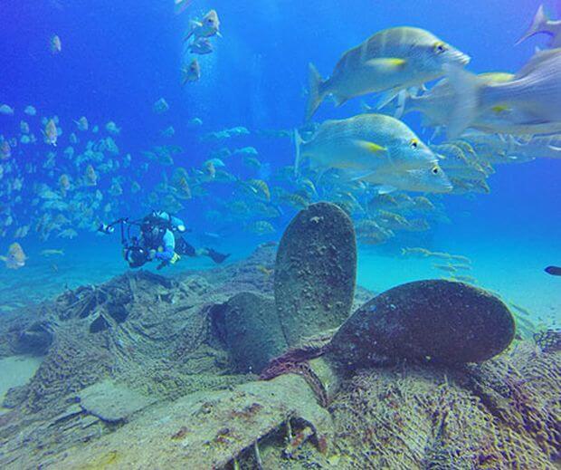 Visiter la réserve marine de Cabo Pulmo à Baja Sur au Mexique